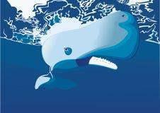 与大牙的一只大抹香鲸 库存照片