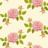 与大玫瑰的样式 免版税图库摄影