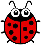 与大眼睛的一只瓢虫 免版税图库摄影