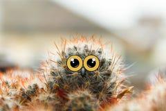 与大眼睛的逗人喜爱的猫头鹰与眼睛的小鸡,仙人掌和额嘴拼贴画 免版税库存图片