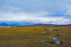 与大石头的干草原风景 免版税图库摄影