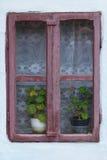 与大竺葵花的老窗架 库存图片