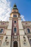 与大老时钟的城镇厅塔 免版税库存照片