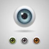 与大虹膜的眼珠 图库摄影
