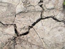 与大裂缝的破裂的土壤在中部 库存图片