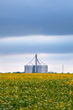与大豆领域的农业产业和筒仓在多云天 图库摄影
