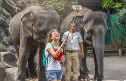 与大象的妇女selfie在徒步旅行队世界动物园里 库存照片