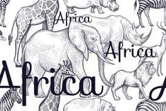 与大象,长颈鹿,犀牛,河马,狮子的无缝的样式 库存照片