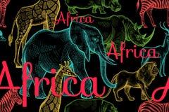 与大象,长颈鹿,犀牛,河马,狮子的无缝的样式 免版税库存图片