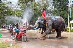 与大象AyuttayaThailand的Songkran节日 免版税库存图片