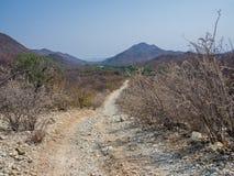 与大车轮痕迹的粗砺的越野轨道沿在Kunene河小屋和Epupa之间的Kunene河落,纳米比亚,非洲 免版税库存照片