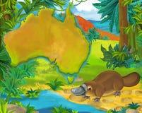 与大陆地图的动画片platypus 库存照片