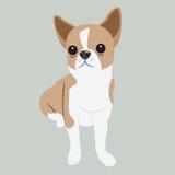 与大黑眼睛的逗人喜爱的小狗 库存图片
