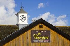 与天气公鸡的一座古板的钟楼在Kircubbin附近的一家园艺中心商店在北爱尔兰 库存图片