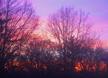 与天空升的美好的日落在火红 免版税库存图片
