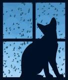 与天空和猫的窗口 库存图片