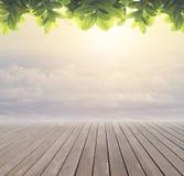 与天空的木地板 免版税库存照片