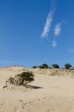 与天空的沙丘在背景 库存照片