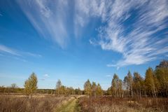 与天空蔚蓝和森林的风景在俄罗斯的中央 典型结尾横向俄国的春天 免版税图库摄影