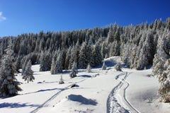 与天空跟踪的美好的冬天横向 库存图片