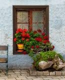 与天竺葵花圃,外部细节,奥地利的窗口 免版税库存图片