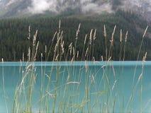 与天蓝色的蓝色颜色的冰河水在路易丝湖附近创造一个平静的场面 库存图片