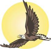 与太阳例证的老鹰飞行 库存例证