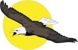 与太阳例证的老鹰飞行 向量例证