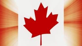 与太阳光线新的质量独特的生气蓬勃的动态行动快乐五颜六色的加拿大沙文主义情绪的无缝的圈冷却 库存例证