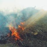 与太阳光芒的火 库存照片
