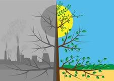 与太阳和灰色城市的绿色小的树 库存图片