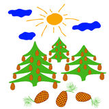 与太阳照亮的大锥体的针叶树 库存照片