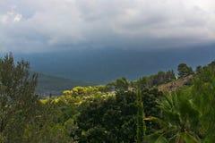 与太阳的庄严山风景和树荫和绿色细微差异 免版税图库摄影