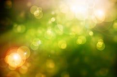 与太阳的绿色抽象迷离自然背景发出光线 图库摄影