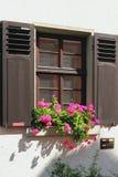 与太阳窗帘和花的窗口 德国海得尔堡 库存照片