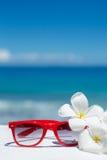 与太阳镜和贝壳的夏天在沙子 免版税库存照片