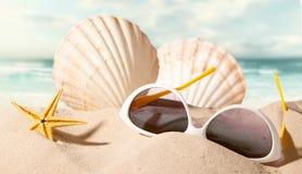 与太阳镜的壳在海滩 库存照片