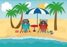 与太阳镜的逗人喜爱的两头猫头鹰在度假躺下在海滩的 免版税库存图片