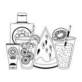 与太阳bronzer瓶和西瓜的柠檬水和猕猴桃汁在黑白 向量例证