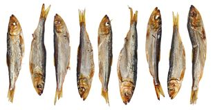 与头和被隔绝的胆量传统立陶宛啤酒快餐的九条整个热的熏制的毛鳞鱼长凳竹刀鱼西鲱波罗的海鱼 免版税库存照片