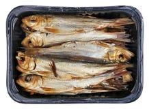 与头的热的整个熏制的毛鳞鱼长凳竹刀鱼西鲱波罗的海在塑料盒的鱼和胆量 免版税库存图片