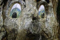 与奇怪的面孔的树 图库摄影