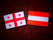 与奥地利旗子的英王乔治一世至三世时期旗子在树桩 库存图片
