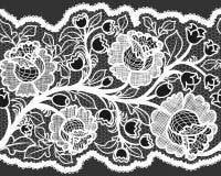 与女性花卉样式的抽象无缝的白色鞋带丝带 库存照片