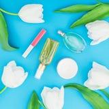 与女性香水、桃红色唇膏、面霜和白色郁金香的构成在蓝色背景开花 秀丽博克 平的位置, t 图库摄影