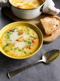 与奶油和菜的三文鱼汤在一块黄色板材 库存图片