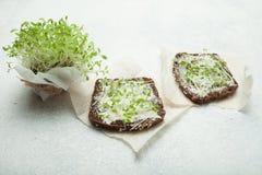 与奶油奶酪和菜微绿色的鲜美快餐 素食健康的三明治 免版税库存图片
