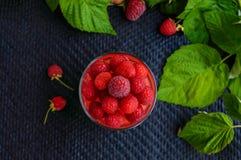 与奶油的夏天点心和莓结冻并且装饰用新鲜的莓果 库存照片