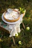 与奶油色装填的苹果饼 库存照片
