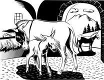 与她小的小狗的一头驴 免版税库存照片